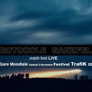 ProtocoleGanzfeld-Crash Test 031118